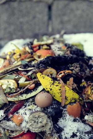organic waste: organic waste Stock Photo