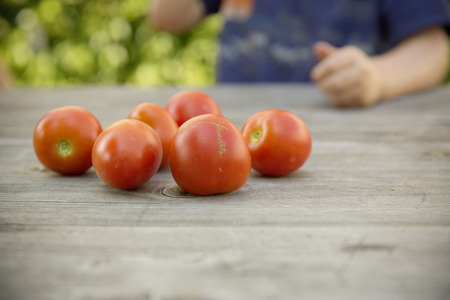 upbringing: bio self-sufficiency with raised bed from hand to mouth