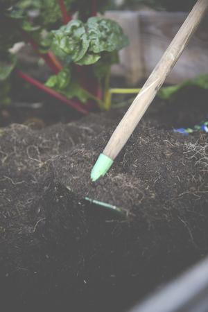 Urban Gardening Selbstversorger mit Hochbeet Standard-Bild - 47225643