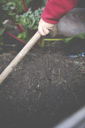 Urban Gardening Selbstversorger mit Hochbeet Standard-Bild - 47225915