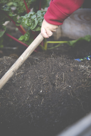 urban gardening: urban gardening self-supporter with raised bed