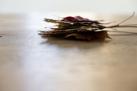 Stapel von bunten Blätter im Herbst Standard-Bild - 50396315