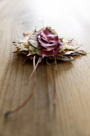 Stapel von bunten Blätter im Herbst Standard-Bild - 50396329