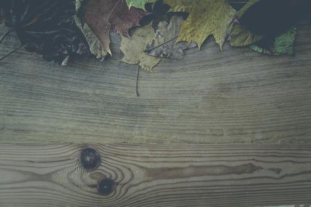 Stapel von bunten Blätter im Herbst Lizenzfreie Bilder