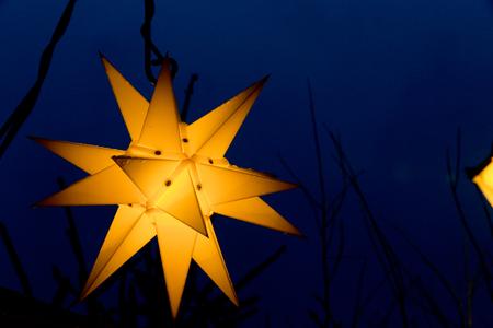 Christmasy vintage christmas holly Dekoration