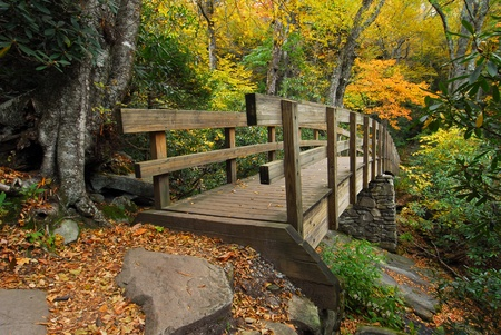 Tanawha Trail Bridge in Western North Carolina Autumn Mountains photo