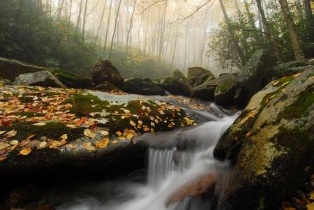 Southern Appalachian Blue Ridge Mountain Autumn Landscape photo