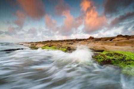 coquina: Florida Beach Washington Oaks State Park Coquina Roca Salida del sol