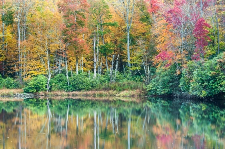 Sims Pond Julian Price Memorial Park North Carolina Blue Ridge Mountains photo