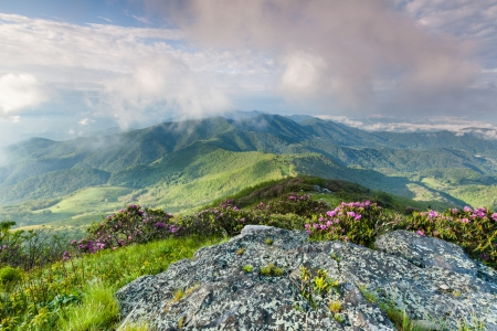 Grassy Ridge Bald in the Southern Appalachian Roan Highlands of Western North Carolina photo