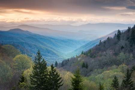 newfound gap: Oconaluftee Valley Overlook Great Smoky Mountains National Park Spring Scenic Landscape