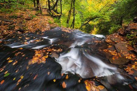 allegheny: Ricketts Glen State Park Pennsylvania Allegheny Mountains