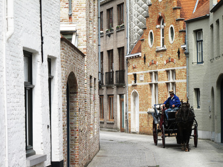 hitched: Immaculate horse and carriage Bruges Belgium. A beautiful brown horse hitched to a four wheel horse carriage. In the background is a body of water and a red brick house. Brugge, Belgium.