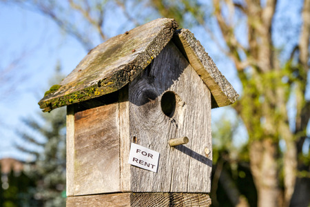 Bird-House For Rent in Portland Depicting the Current Housing Shortage.