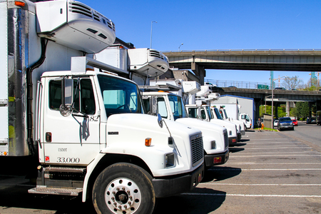 A Long Line of Large White Trucks