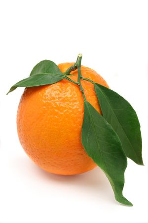 grown: Organically grown orange with leaves