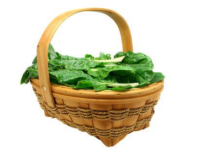 Basket full of freshly picked organic chard leaves isolated on pure white Stock Photo - 935492