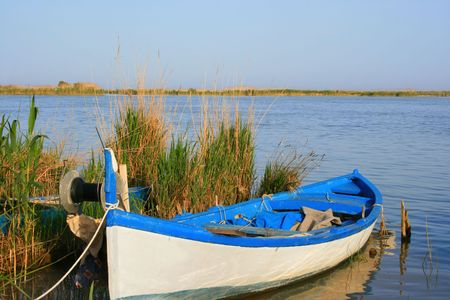 reeds: Old wooden rowing boat on the river