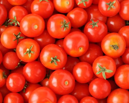 cherry tomato: Organically grown red cherry tomatoes background Stock Photo