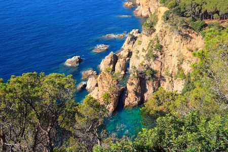 costa brava: Costa Brava paysage pr�s de Tossa de Mar (Girona, Espagne)