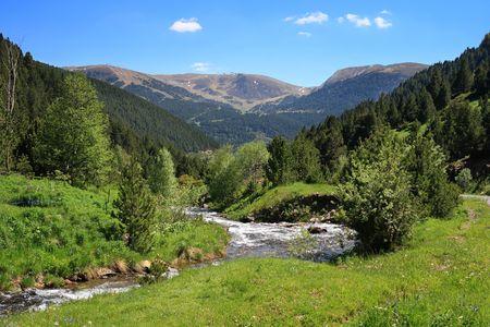 andorra: Mountain stream in Vall de Ransol (Pyrenees, Andorra)