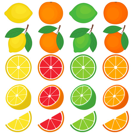 grapefruits: Vector citrus set with oranges, grapefruits, lemons and lime