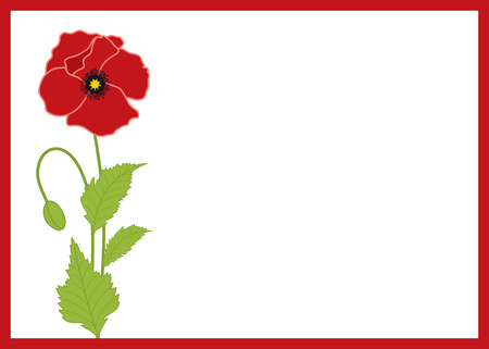 red poppy: Vector card with frame and red poppy