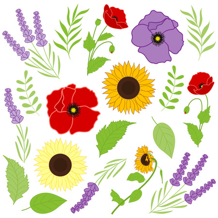 provence: Vector provence flowers - sunflowers, poppies, lavender with leaves Illustration
