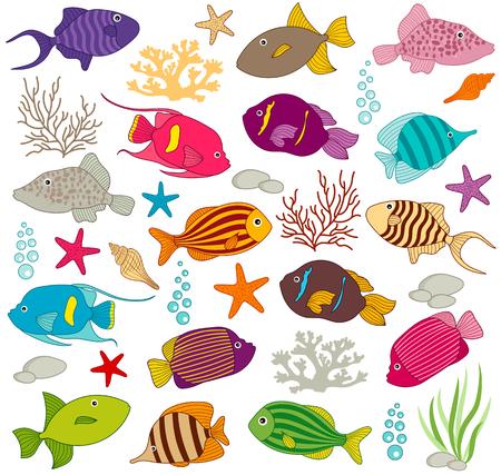 underwater scene: Vector doodle underwater scene with colorful fish