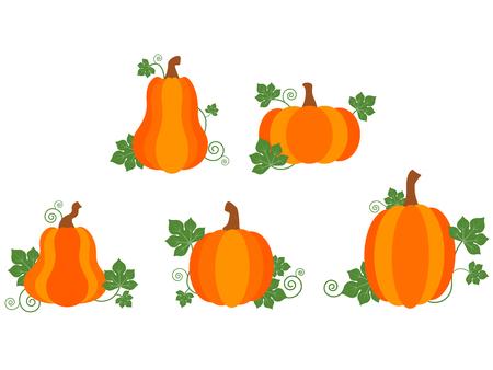 Vector oogst oranje pompoenen met groene bladeren Stock Illustratie