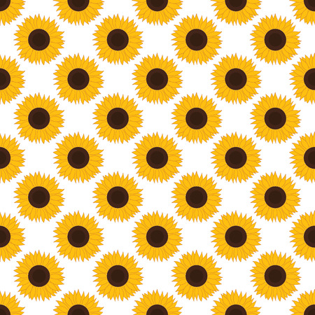 repeats: Vector seamless pattern with sunflowers on white background. Vector sunflower. Sunflower seamless pattern. Vector illustration.