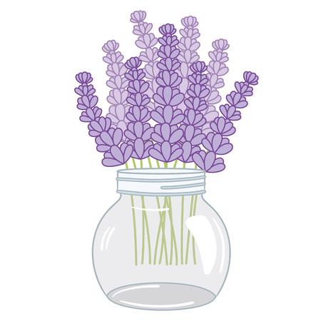Vector lavender bouquet in glass jar. Lavender vector illustration