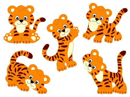 Vector set of cute cartoon tigers. Vector tiger cub. Tigers vector illustration