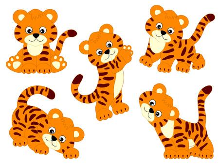 Vector set of cute cartoon tigers. Vector tiger cub. Tigers vector illustration