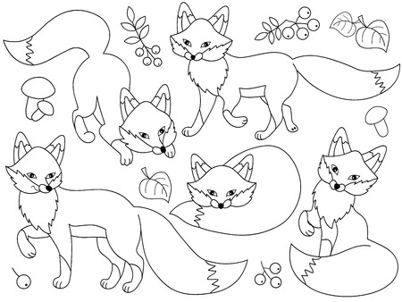 Vector set of black and white cute cartoon foxes, leaves, berries and mushrooms. Vector fox. Foxes vector illustration 向量圖像