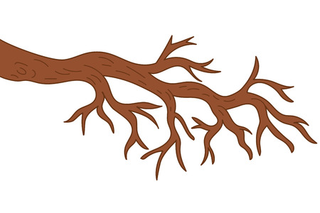 Vector bare tree branch. Tree branch vector illustration Illustration