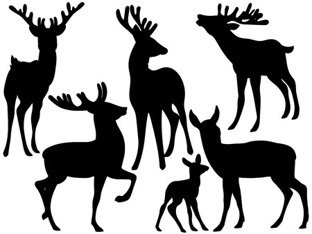 Vector silhouettes of woodland deers.