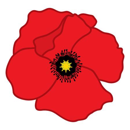 Vector bud of red poppy. Vector poppy. Poppy vector illustration Illustration