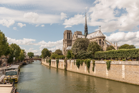 Cathedral of Notre Dame de paris. France