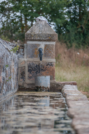 Spain. Drinking trough or typical pilon in the national park of Fuentes Carrionas. Palencia