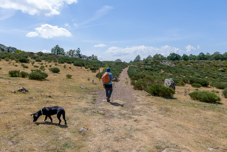 Spain. Man walking with his dog in the mountains of Palencia