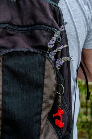 Black backpack with three lavender flowers and red motorcycle keychain