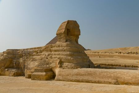 Sphinx in the city of Giza. Egypt