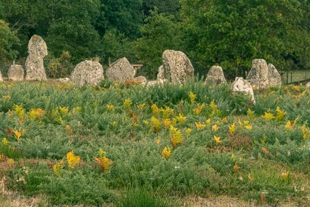 Alignments of Carnac, Menhir de Carnac in the Brittany region. France.