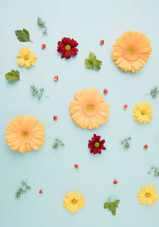 fresh flower flat lay made with love, yelow gerber and red chrysanthemum on blue background. richly created.