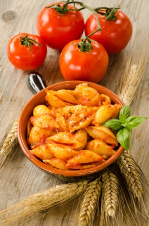 Conchiglie rigate with tomato sauce,basil and parmigiano cheese Stock Photo - 16236304