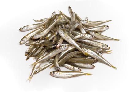 Manojo de morralla fresca, pescado fresco Foto de archivo - 36909210