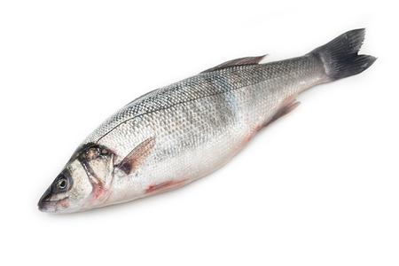 Fresh sea bass Banque d'images