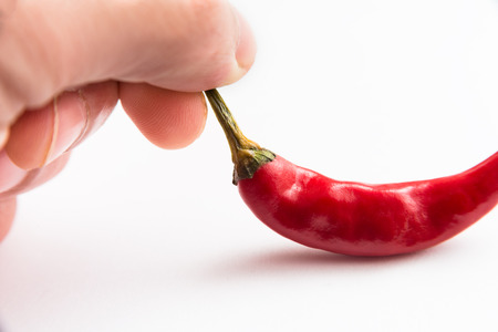 chili peppers: Chili peppers on white
