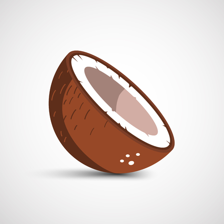 Vector half of coconut closeup on a white background  イラスト・ベクター素材